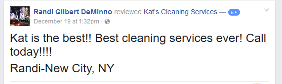 House Cleaning In Manchester NJ And Surrounding Areas